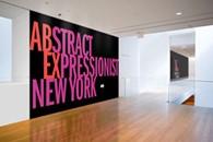moma museu de arte moderna nova york